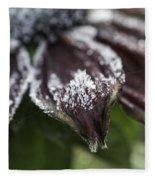Frosty Rudbeckia Fleece Blanket