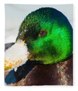 Mallard On Ice Fleece Blanket