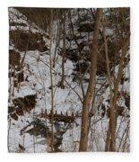 Frozen Dam Fleece Blanket