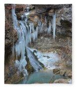 Frozen Eden Fleece Blanket