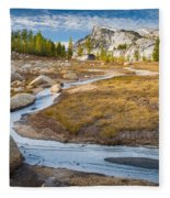 Frozen Enchantments Creek Fleece Blanket