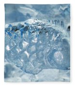 Frozen Fish Of The Northern Forests Fleece Blanket
