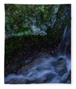 Frozen Garden Stream Fleece Blanket