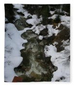 Frozen Stream Fleece Blanket