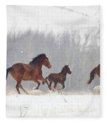 Frozen Track Fleece Blanket