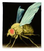Fruit Fly Sem Fleece Blanket