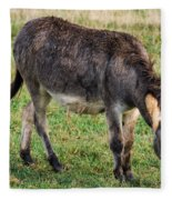 Full Grown Donkey Grazing Fleece Blanket