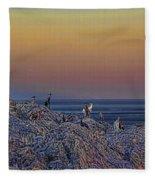 Full Moon Gathering Of Capricorn Fleece Blanket