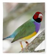 Full Of Color Fleece Blanket