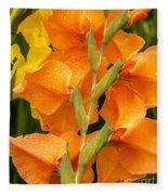 Full Stem Gladiolus Fleece Blanket