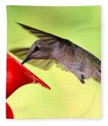 Fun Summer Hummingbird Fleece Blanket