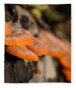 Fungus 2 Fleece Blanket