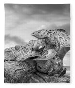Funky Fungi Black And White Fleece Blanket