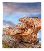 Funky Fungi Fleece Blanket