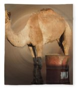 Funny Beduin Camel Talk  Fleece Blanket