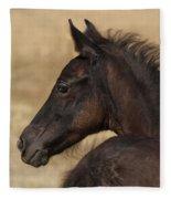 Fuzzy Colt Fleece Blanket