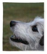 Fuzzy Whiskers Fleece Blanket