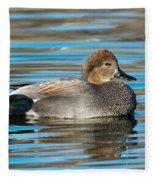 Gadwall Duck Drake Swimming Fleece Blanket