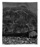 Galapagos Tortoise Baby Fleece Blanket