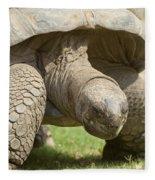 Galapagos Turtle Fleece Blanket