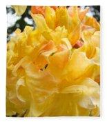 Gallery Fine Art Prints Yellow Orange Rhodies Fleece Blanket