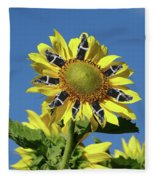 Garciacat Sunflower Fleece Blanket