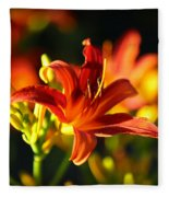 Garden Glow Fleece Blanket