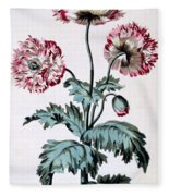 Garden Poppy With Black Seeds Fleece Blanket