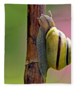 Garden Snail Bright Fleece Blanket