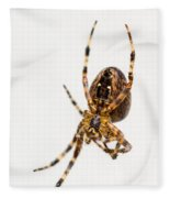 Garden Spider Profile Fleece Blanket