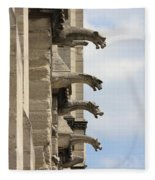 Gargoyles Of Notre Dame Fleece Blanket