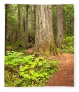 Garibaldi Wilderness Rainforest Fleece Blanket