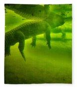 Gator Reflection Fleece Blanket