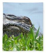Gator Watching Fleece Blanket