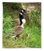 Geese And Gosling Fleece Blanket