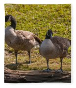 Geese On A Log Fleece Blanket