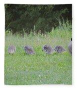 Geese Tails Fleece Blanket