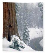 2m6836-generals Highway In The Giant Sequoias Fleece Blanket
