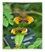 Gentle Butterfly Courtship 01 Fleece Blanket