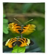 Gentle Butterfly Courtship 03 Fleece Blanket