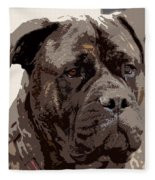 Gentle Gina  Fleece Blanket