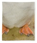 Gentoo Penguin Feet Fleece Blanket