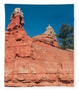 Geological Forces At Red Canyon Fleece Blanket