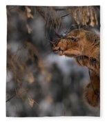 George Eating Maple Seeds In Winter Fleece Blanket