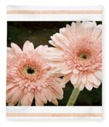 Gerber Daisy 5 Fleece Blanket