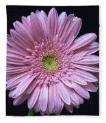 Gerber Daisy Flower Fleece Blanket