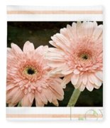 Gerber Daisy Love 5 Fleece Blanket