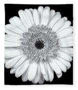 Gerbera Daisy Monochrome Fleece Blanket