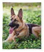 German Shepherd Dog Fleece Blanket