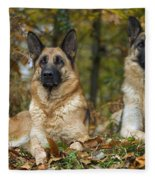 German Shepherd Dogs Fleece Blanket